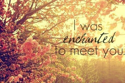 i was enchanted to meet you