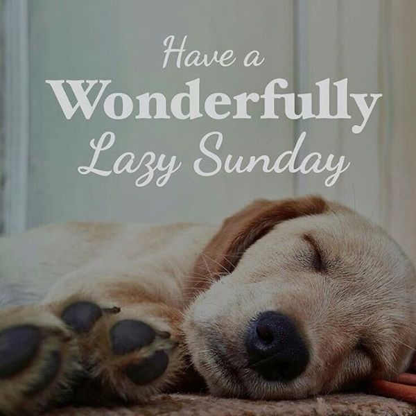 Image result for happy sunday images