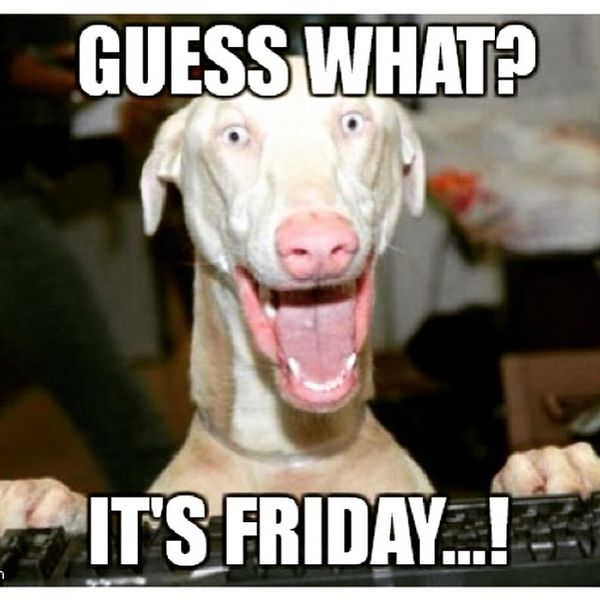 Guess what its friday