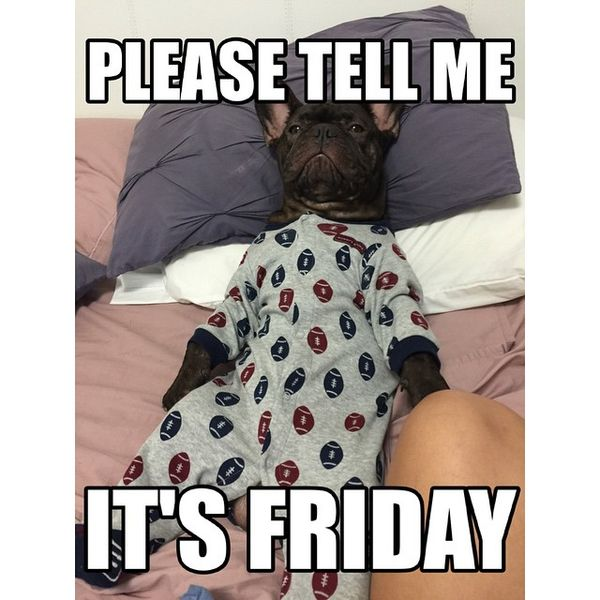Please tell me its friday