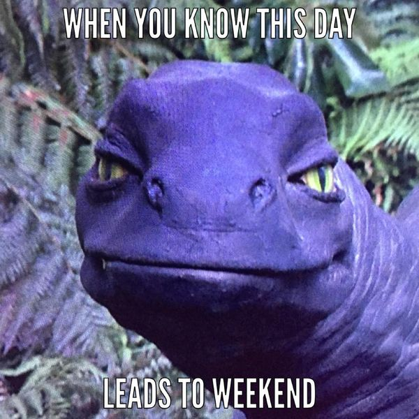 When you know this day leads to weekend