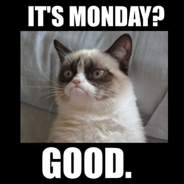 60 monday memes funny monday work memes its monday good thecheapjerseys Gallery