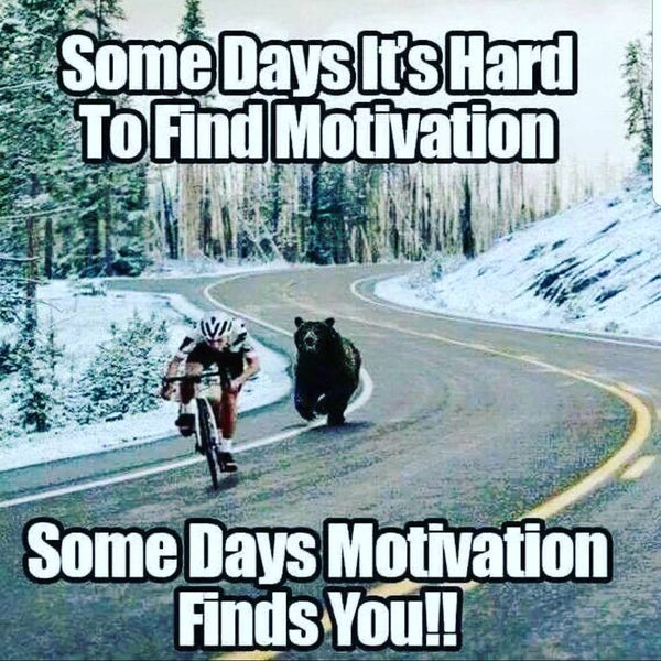 Image result for motivational meme funny