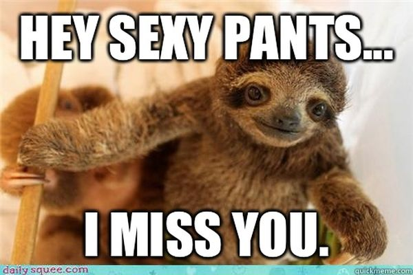 Funny Miss You Friend Meme : I miss you memes sweetytextmessages