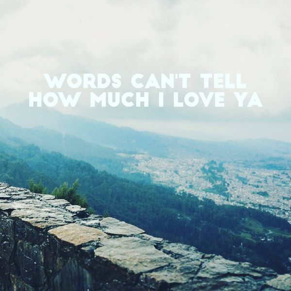 Words Can`t Tell How Much I Love Ya.