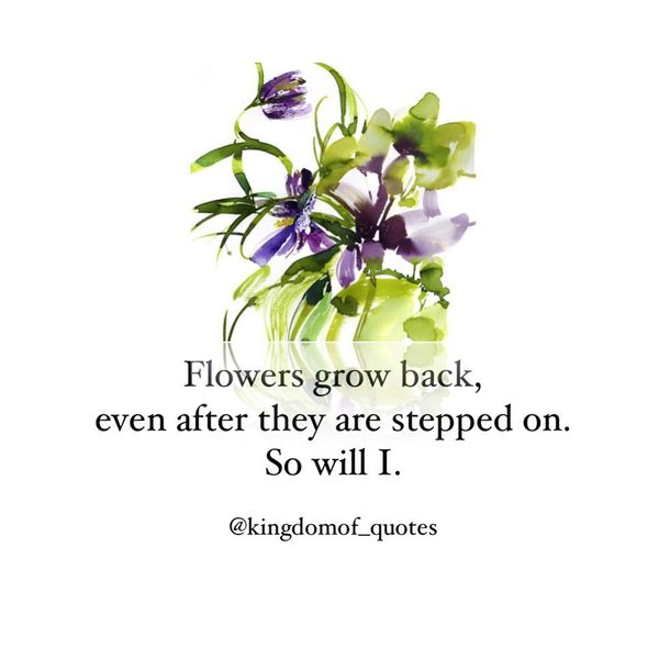 Flowers Grow Back, even after They are Stepped on.