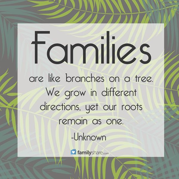 Families are Like Brances on a Tree.