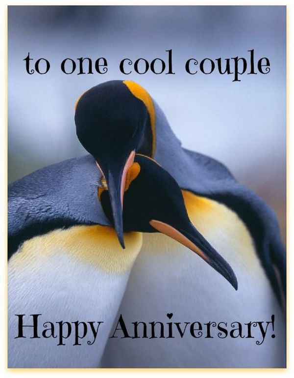 Happy anniversary memes funny wedding images