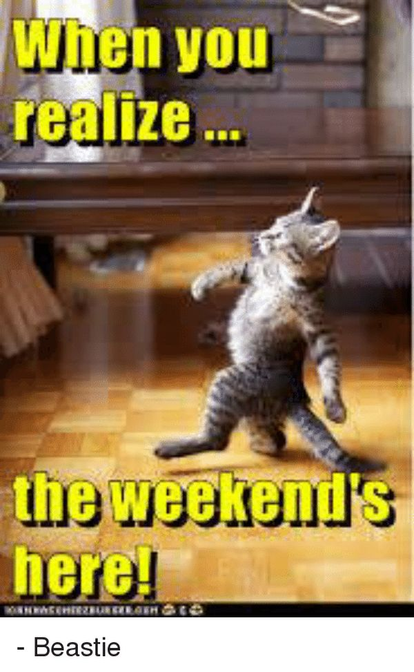 Weekend Is Here Meme