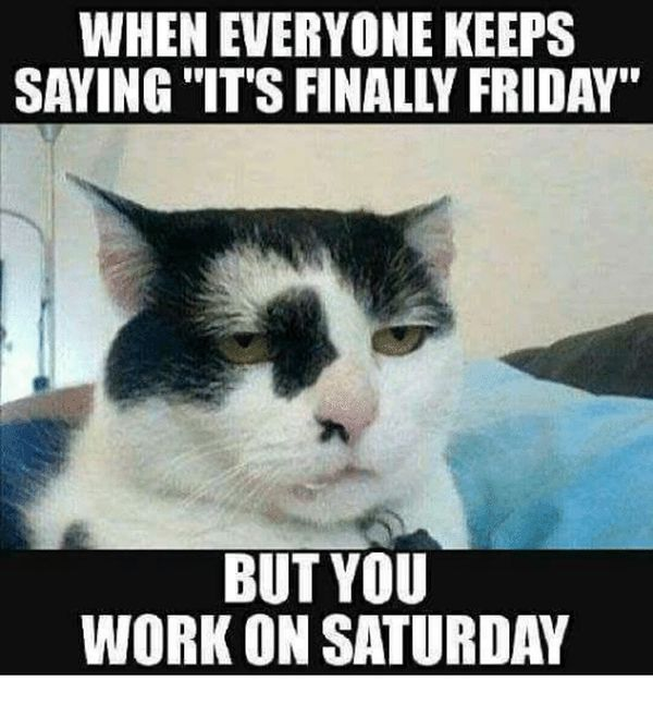 Working Saturday Meme for People Who Work on Saturday 2