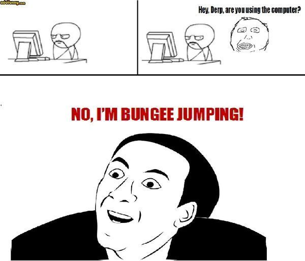 Hey Derp, are you using the computer? No, I`m bungee jumping!