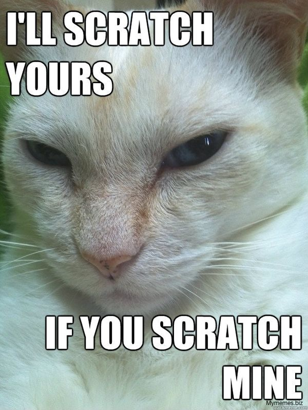 I`ll scratch yours if you scratch mine