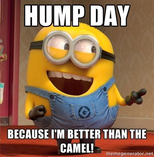 Free Happy Hump Day and Wednesday Cool Images 1