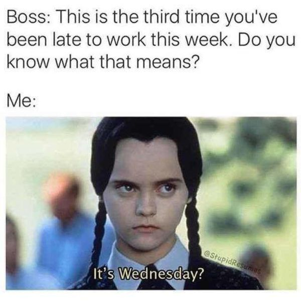 Funny Memes about Hump Day 2