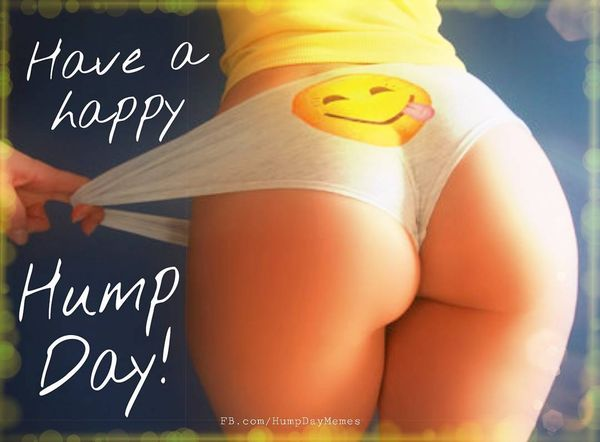 Happy Hump Day Nice Wishes Meme 1