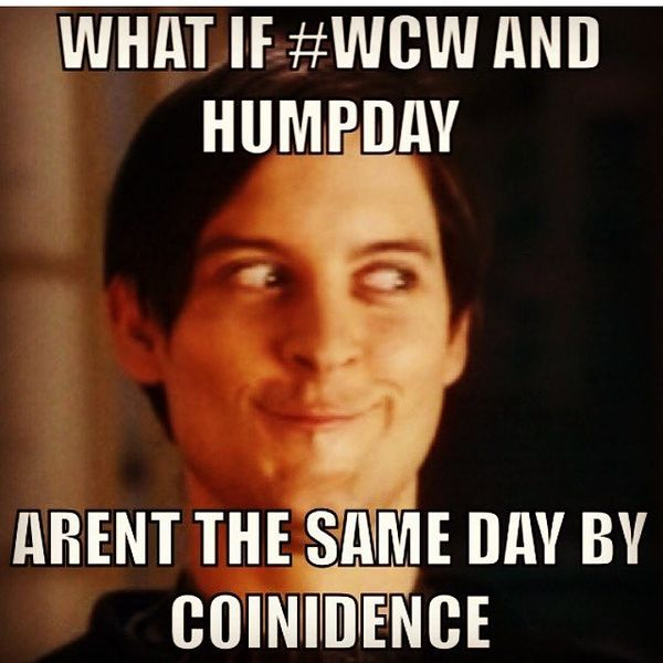 Hilarious Memes about Hump Day 3