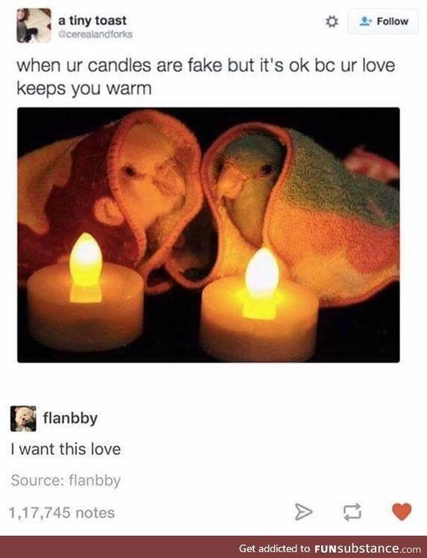 Memes about Love and Relationship3
