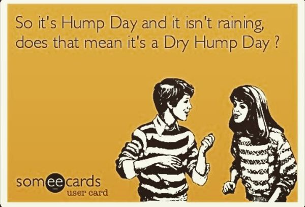 The Best Hump Day Funny Pictures