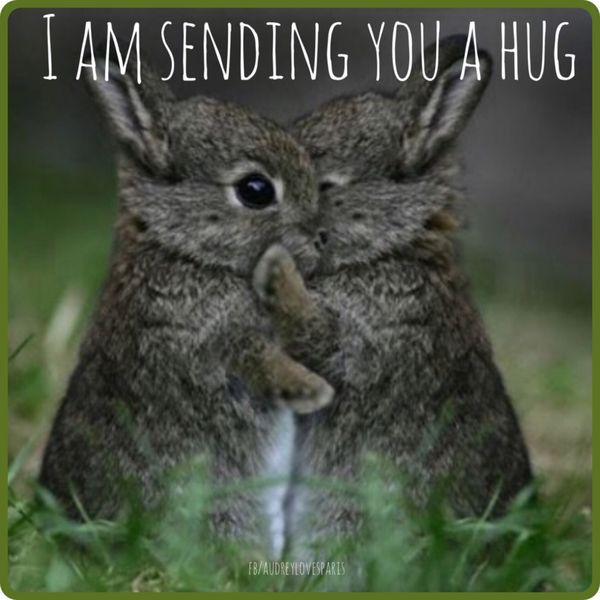 Image result for hugs meme