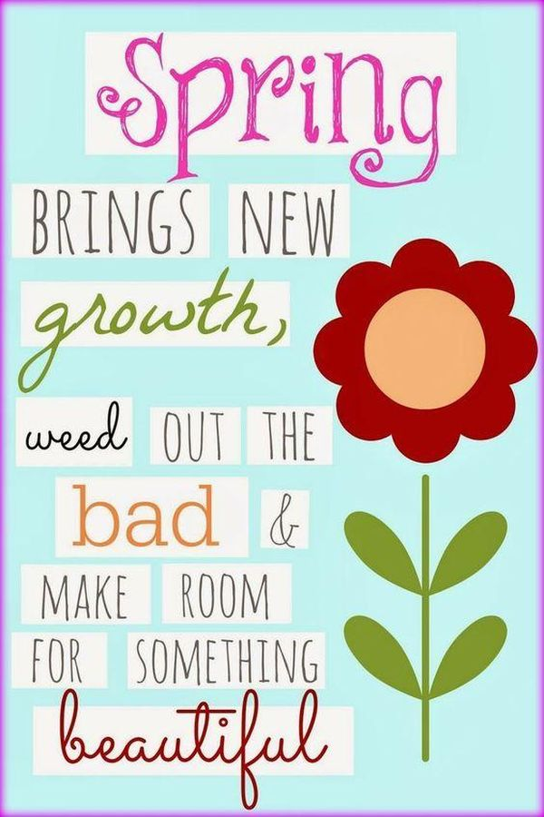 Spring Quotes Impressive Spring Quotes Inspirational And Funny Sayings About Spring