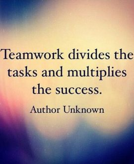 Priceless Team Quotes to Achieve Success