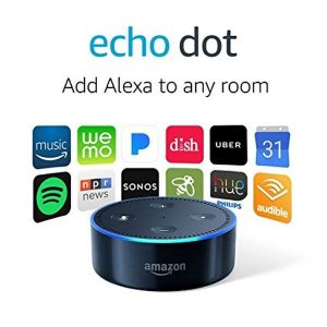 2nd Generation Echo Dot