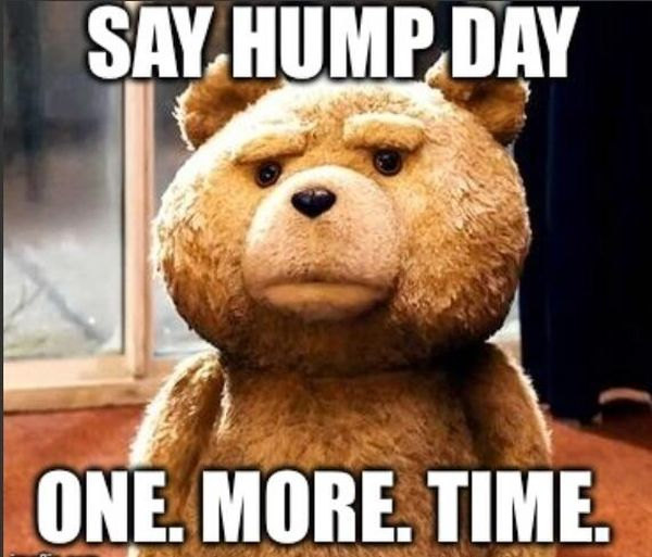The Funniest Hump Day Images and Quotes 5